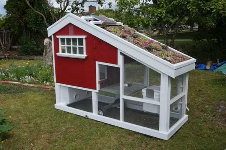 24 Amazing Low-Budget DIY Backyard Chicken Coop Plans ...